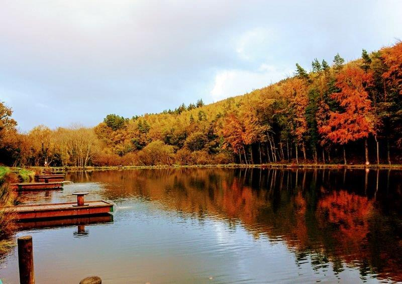 Paula lakes autumn