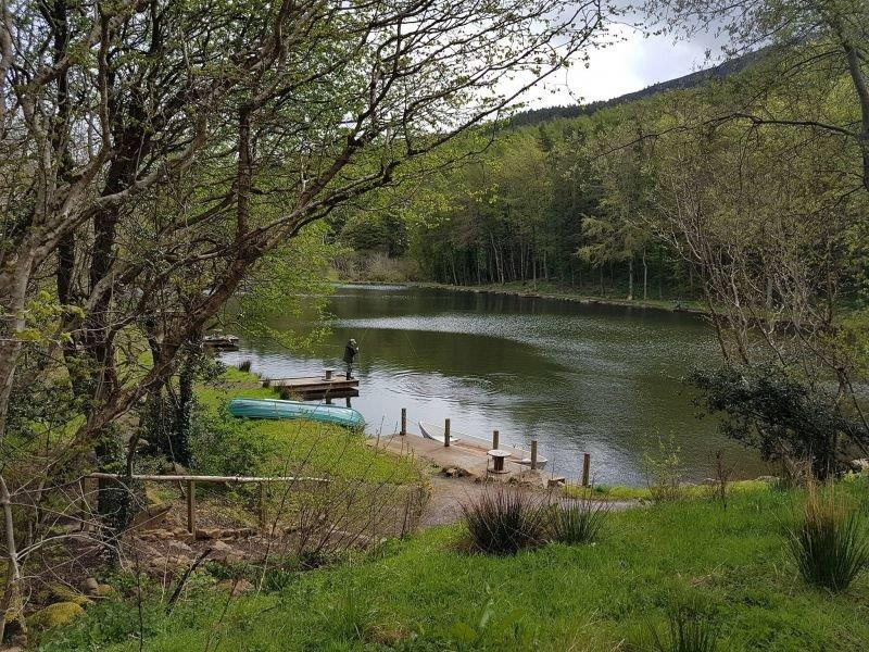 Trout-fly-fishing-lakes-breaks-holidays-northern-Ireland-fresh-water-bait-fly-fishing-lakes-coleraine-derry-limavady-rainbow-trout-fishing-lakes-duncrun-resize-4
